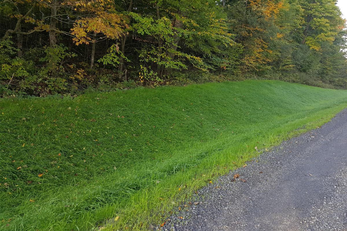 bord de route les gazons durables belanger 1